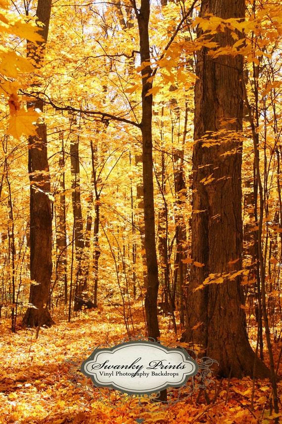 NEW ITEM 4ft x 6ft Fall Trees / Vinyl Photography Backdrop / Newborn photos