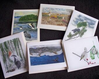 Note Card Set Watercolor Birds Loons, Avocet, Redwing Blackbird, Solitaire, Junco, Owls