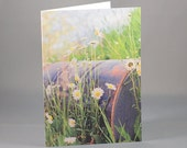 Photo Greeting Card, Blank Note Card, Daisies, Flowers, Birthday, Thank you, Feel Better Soon, Thinking of You
