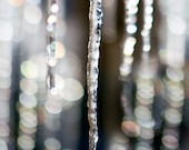 Winter, Snow, Icicle,  Wall Art, 8 x 10 Photography,