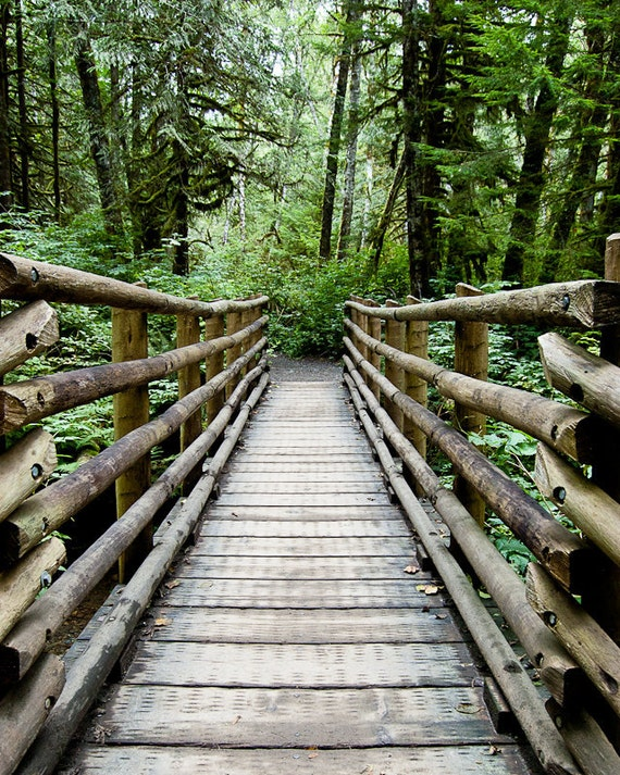 Wooden Bridge, Path to the Forest- 8 x 10 Fine Art Photography Print