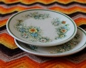 "Set of Two Small Temper-Ware Plates in ""Floral Fantasy"""