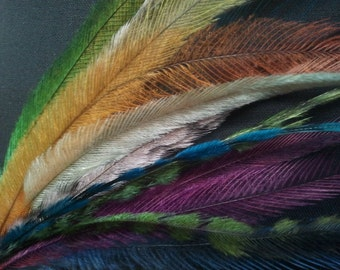 Feather extensions - BULK LOT - Feather extension - Emu Feather Hair extensions