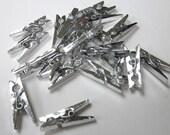Metallic Silver Mini Clothes Pegs