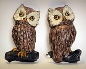 30% OFF) Vintage Owl Wall Hangings - Pair