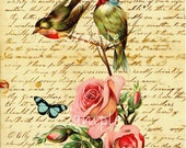 Instant Download -Single Vintage Image Birds and Letter - Large Image- Printable Digital Download - Frameable - Transfer Image -
