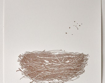 Bird's Nest Drawing - Limited Edition Letterpress Print of 100