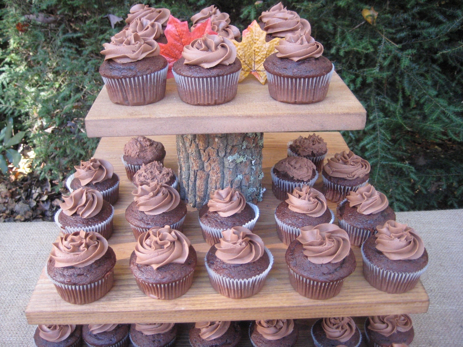 rustic cupcake holder  burlap cupcake wrappers  36  safari