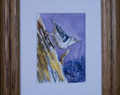 Bird Watercolor-NutHatch Painting-Framed Art-Original by Diann