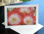 Tulip Painting Card Set