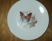 BUTTERFLY Vintage Wall Plate, A White Ceramic Larger Sized Plated with Elegant Monarch Butterfly design  print decal in mint condition