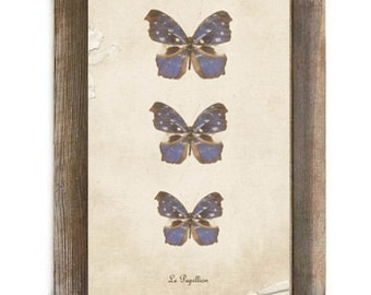 Le Papillion Antique Blue and Brown Butterflies Digital Download Print