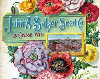 Vintage Seed Packet Digital Download Art File Print Floral Flower