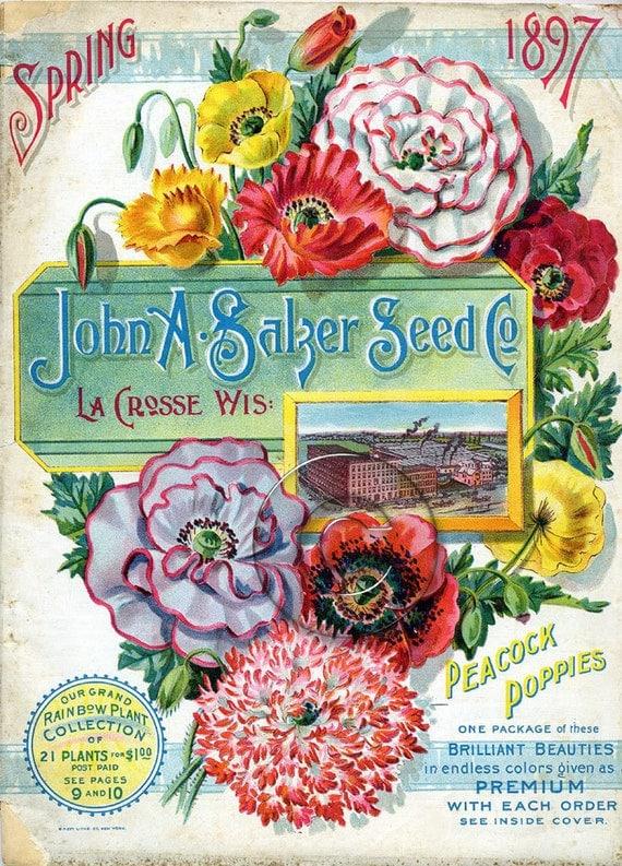 Vintage Seed Packet Digital Download Art File by BreatheDecor