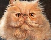 Original Oil Portrait Painting PERSIAN RED CAT Artwork Art from Artist