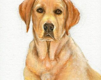 Original Oil DOG Portrait Painting YELLOW LAB Artwork from Artist