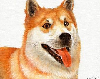 Original Oil DOG Portrait Painting ICELAND SHEEPDOG Artwork from Artist