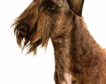 Original DOG Oil Portrait Painting CESKY TERRIER Artwork from Artist