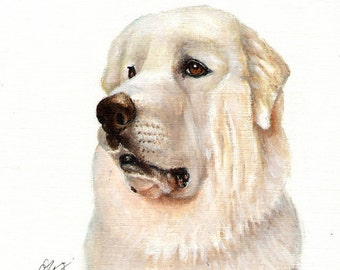 Original Oil DOG Portrait Painting GREAT PYRENEES Artwork Art from Artist