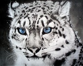 Snow Leopard, Animals, Original graphite and pastel pencil drawing: 'To Face Extinction'