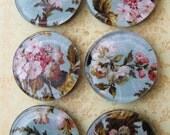 Vintage Floral Large Glass Magnets Shabby Aqua Pink Vintage  Home Decor Office Decor Two Inches Diameter