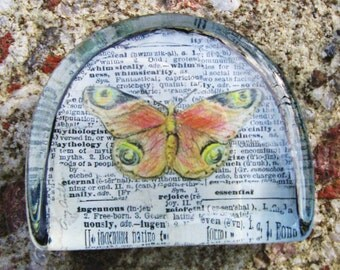 Butterfly, Moth, Butterfly Moth Drawing, Natural History, Original Art, Glass Paperweight