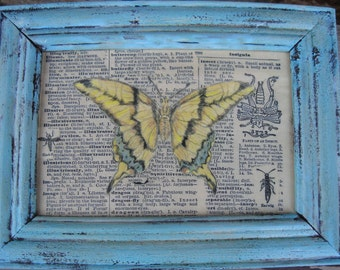 "Butterfly, Butterfly Specimen Print, Framed Butterfly Drawing Print, 6"" x 7 1/4"", Aqua Framed Butterfly"