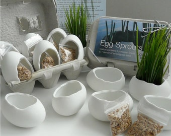 Porcelain Egg Planters, Wheat Grass Kit, Egg Sprouts Set of 6