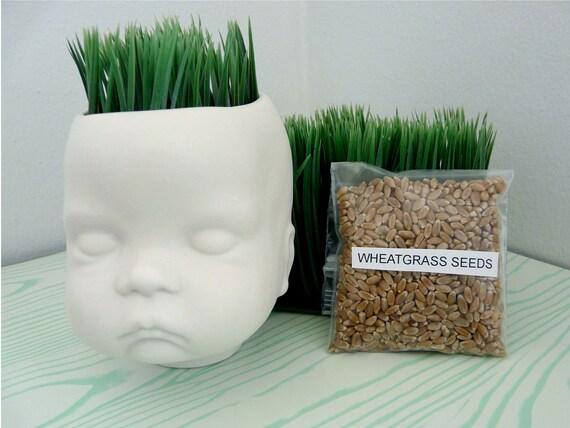 Porcelain Wheatgrass Planter, Baby Head