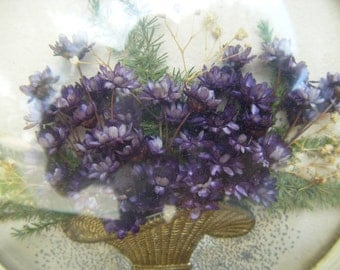 1940's Basket of Dried Flowers in CELLULOID Frame