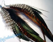 Brown black and white long grizzly feather earrings