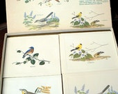 """Vintage 1971 """"Bright of America"""" Boxed Note Card Set - Songbirds of America - Watercolors by Chuck Ripper"""