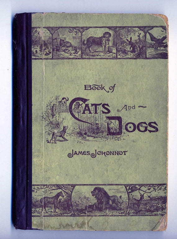 Antique Book Of Cats And Dogs1884 By James Johonnot Illustrated