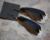 GORGEOUS NEW Hand Made Feather Earrings by Jim Byrne