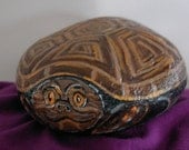 Painted Rock Turtle