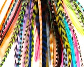 Sale of the week 50 Feather Hair Extensions Salon Lot for Medium and Short Hair (4-7 in)