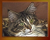 Young Maine Coon Woodcut style photo