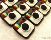 Handmade Instagram Felt Pin - Made to Order (Free shipping special)