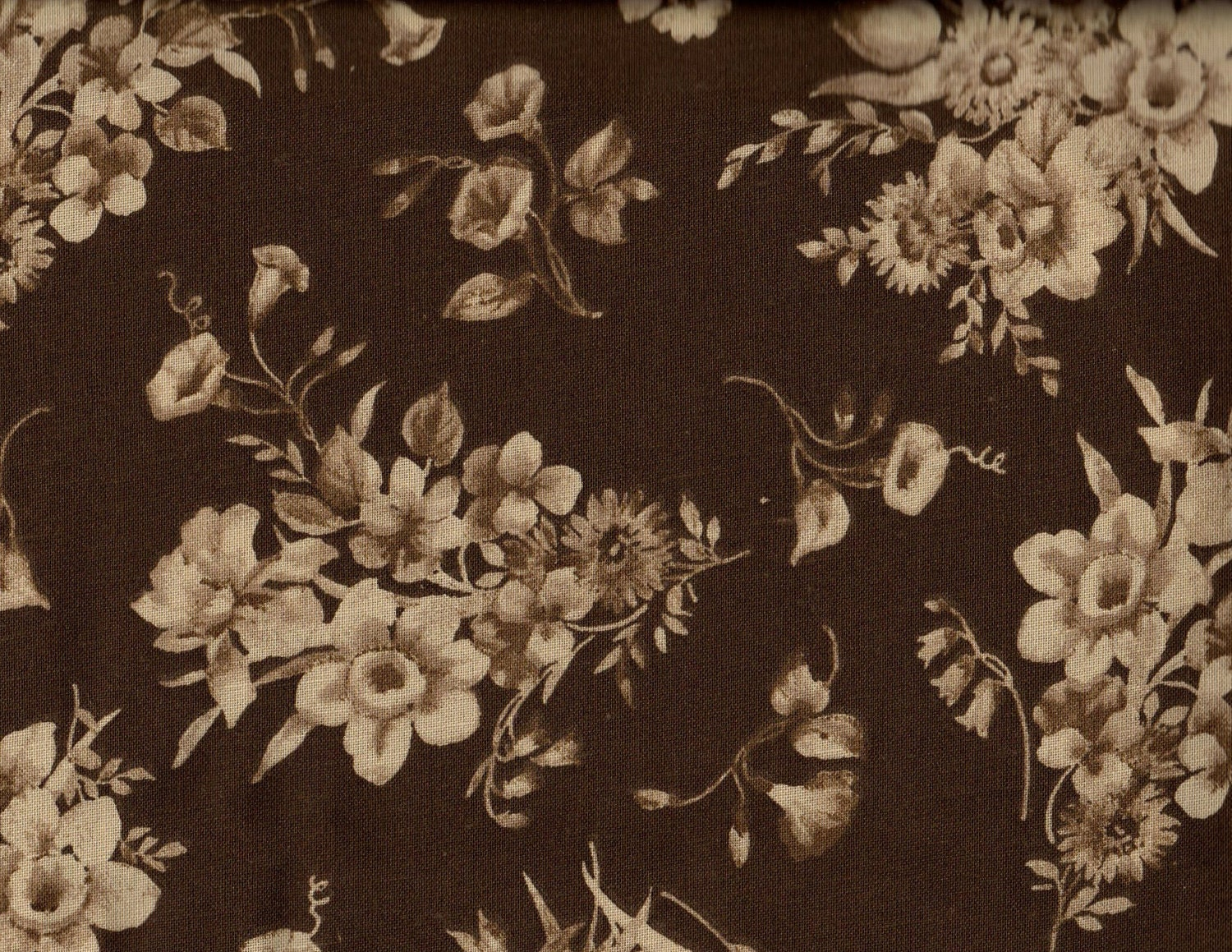 Eob Clearance 1 1 8 Yard 108 Quiltbacking Floral