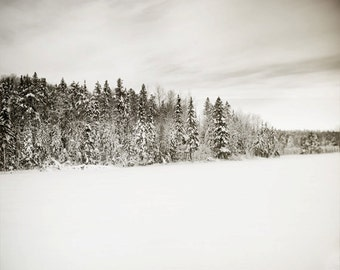 Winter forest photo snowy scene winter landscape black and white neutral magical dreamy fine art wall art minimalist home decor