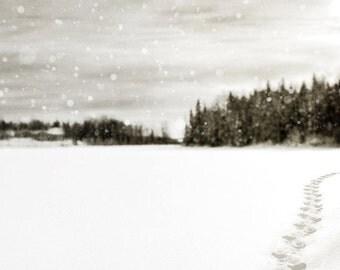 Winter Landscape Photo, winter decor, snow scenery, white decor, snowy snowing snowstorm, black and white winter decor