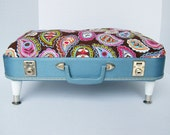 Pet Bed from Vintage 50s Suitcase - Blue with bright paisley fabric