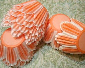 Cupcake liners Mini-Midi Orange Flower  Scalloped Edge Tulip Baking Cups 50