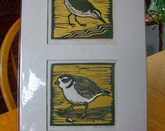 Sanderling and Piping Plover Prints