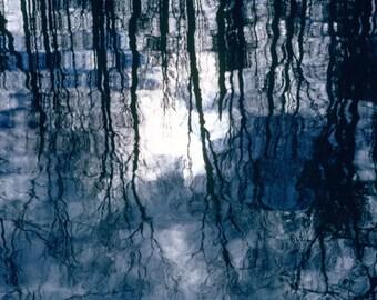 Trees, Reflections, Fernbank Forest, Atlanta, GA