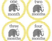 Monthly Bodysuit Stickers for New Mom Neutral Month Stickers for Baby Girl or Baby Boy Elephant Baby Shower Gift