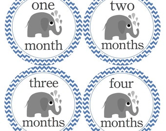 Baby Boy Month Stickers Blue Chevron and Elephants Monthly Stickers for New Mom and Baby Girl or Baby Boy...Favorite Baby Shower Gift