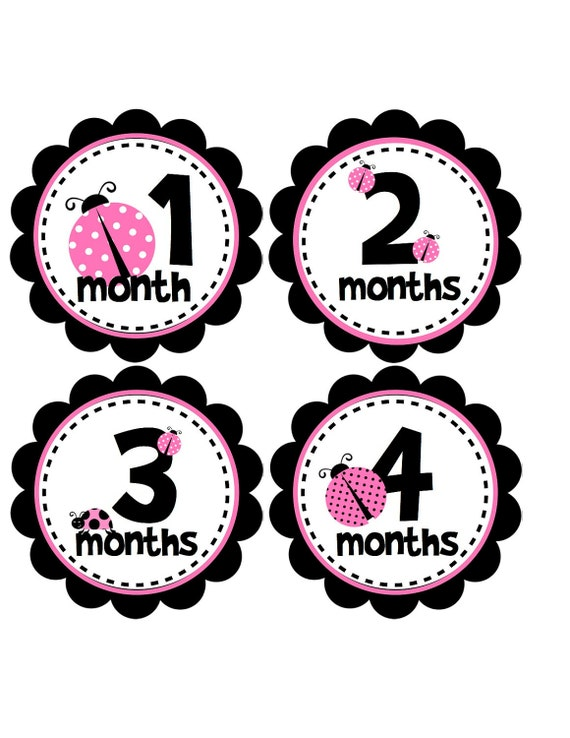 Pink Ladybug Monthly Baby Stickers - Baby Month Stickers for Baby Girl - Ladybug Nursery Gift - Ladybug Baby Shower - G130
