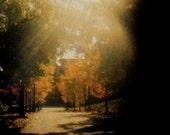Lomography-4x6-Soft Focus Fall-35mm