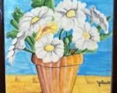 Daisy Flowers in a Pot